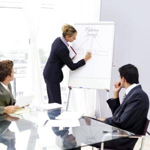 Consultant-Services